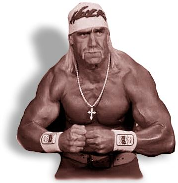 http://venus.fandm.edu/~fcrawfor/teaching/fall_2005/introlab/hulkhogan.jpg